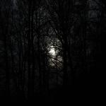 Буьйса – Nacht – Apti Bisultanov